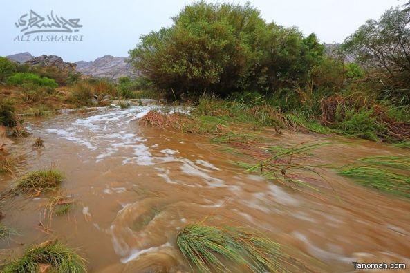 الأرصاد تتوقع هطول أمطار رعدية على المرتفعات الجنوبية