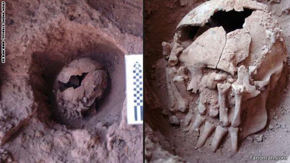 اكتشاف جمجمة عمرها 9 آلاف عام.. هل هي أقدم دليل على شعائر تقطيع الأجسام؟