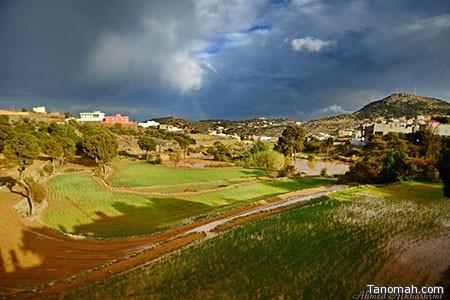 الأرصاد تتوقع هطول أمطار رعدية على مرتفعات عسير