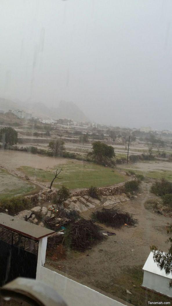 بالفيديو:#أمطار غزيرة على #تنومة