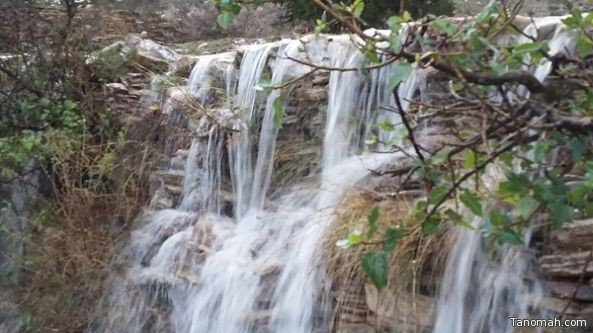 بالصور: #تنومة بعد المطر