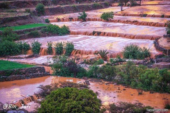 #أمطار #بللسمر في صور