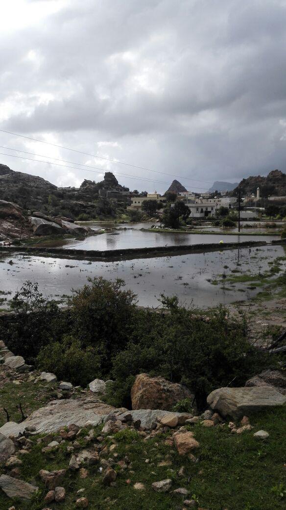 الأمطار تتواصل على #تنومة