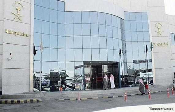 احتساب السعوديين المعارين من القطاع العام إلى الخاص في نسب التوطين