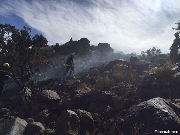 الدفاع المدني ومواطنون ينجحون في احتواء حريق أشجار في #عسير