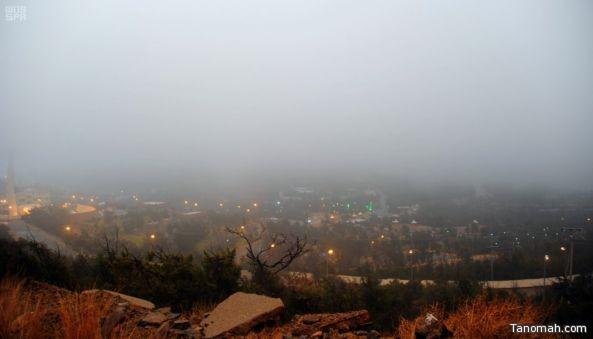 هطول أمطار على #رجال_ألمع و #الباحة