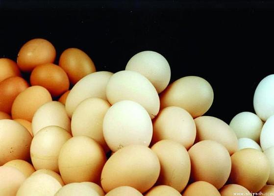 « الغذاء والدواء» تحظر استيراد لحوم الدواجن والبيض من مناطق في 5 دول