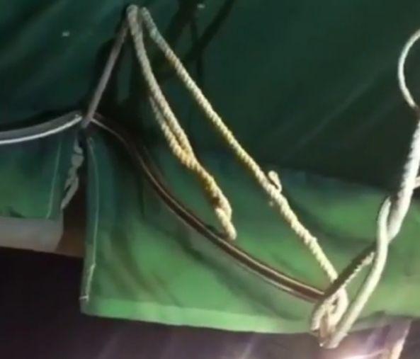 #مواطن يرصد أثناء نزهة ثعباناً ضخماً في خيمته