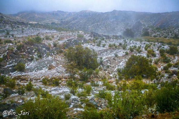 بالصور :#أمطار #تنومة اليوم