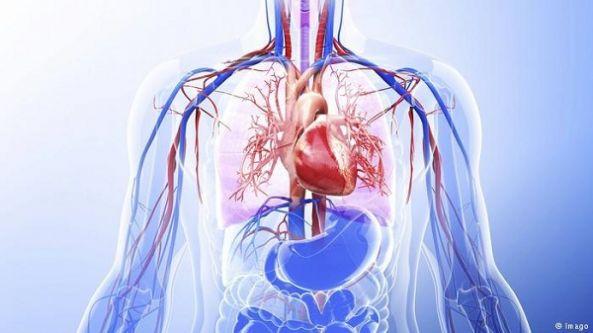 جسم الإنسان ..قدرة مذهلة على العلاج الذاتي