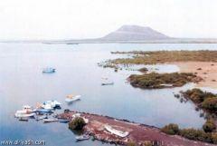 أمير عسير وجه ببدء أعمال تطوير ساحل عسير البحري