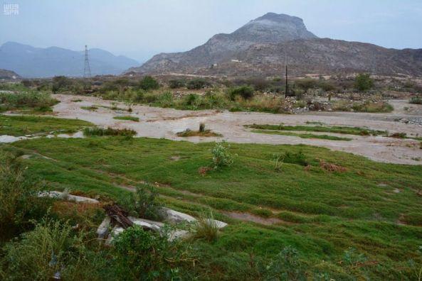 بالصور: #أمطار محافظة #بارق