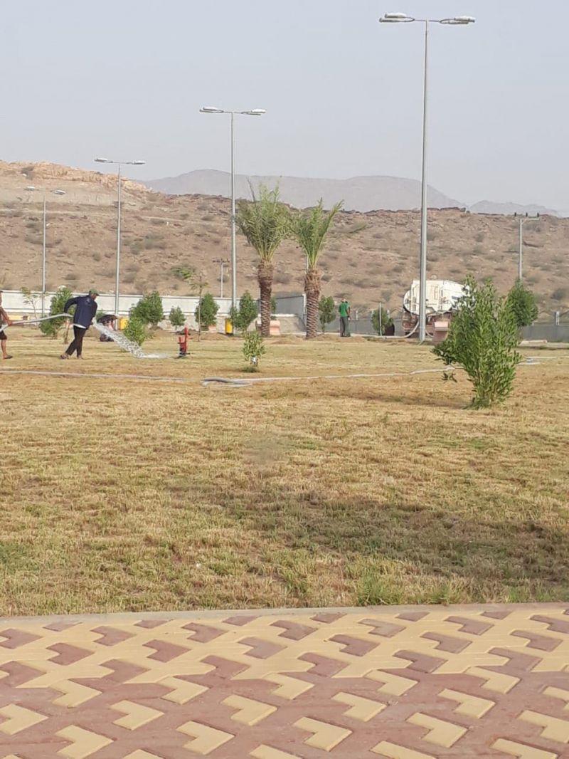بلدية بارق تواصل أعمال تجميل الحدائق و نظافة الأحياء