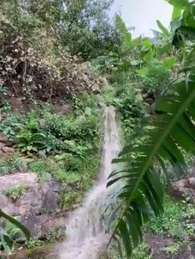 #فيديو: ري مزارع الموز والبن بمياه الكظايم في قرية الحضن