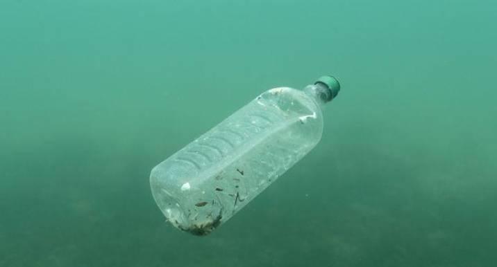 دراسة: يستهلك الإنسان ما حجمه بطاقة ائتمان من البلاستيك أسبوعيا
