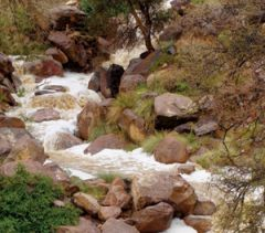 منسوب مياه الأمطار التي هطلت على النماص وبعض مناطق عسير