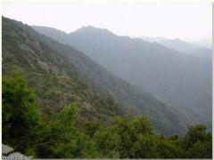 هيئة المساحة الجيولوجية: أعلى نقطة ارتفاع في المملكة جبل السودة وأخفضها سبخة الحمر