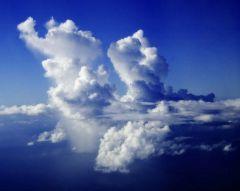 أمطار وعواصف رعدية ورياح شديدة تجتاح المنطقة الشرقية