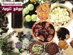 المملكة تزخر بـ 319 نوعاً من أعشاب الطب البديل