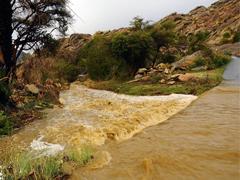 أمطار الجمعة من خلال عدسة أحمد الخشرمي