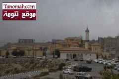 أهالي النماص يطالبون مدير جامعة الملك خالد الجديد بزيادة المقبولين وحل تعثر مشروعات كليات البنات