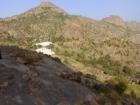 نمر عربي في جبال منعا وفريق من هيئة حماية الحياة الفطرية يتواجد بالموقع