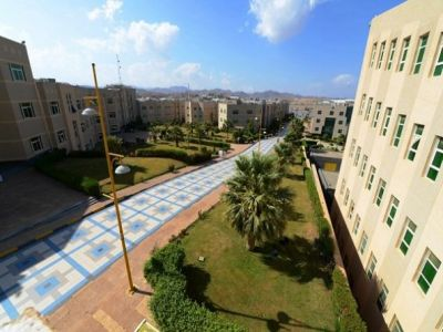 البدء في التقديم على الدبلومات التربوية بجامعة الملك خالد