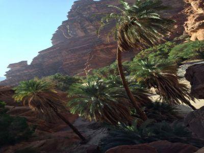 """بالفيديو: الديسة"""" طبيعة وتكوينات صخرية خلابة"""