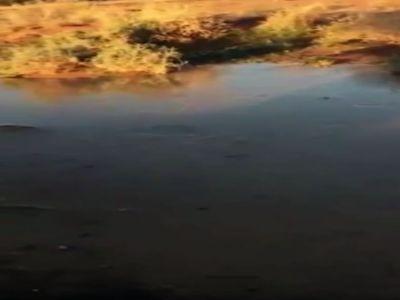 فيديو: تجمد المياه في أودية حائل