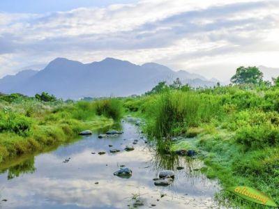 وادي الغيناء.. الخضرة والمياه الجارية