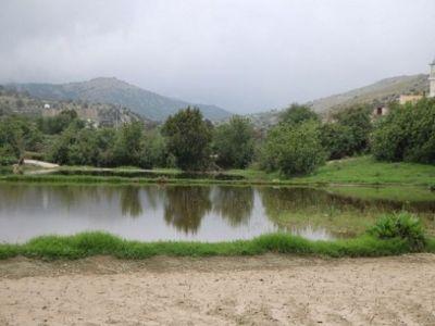 """الماء والخضرة في وادي """"آل فليته"""" بـ #تنومة"""