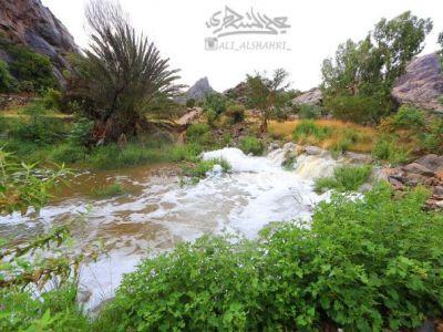 """لقطات (فيديو) من سيل وادي قرية """"آل خضاري"""" في #تنومة رابع أيام نوء المرزم"""