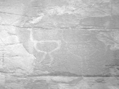 هل تكشف هذه النقشة سراً من أسرار الإنسان القديم في منعاء ؟