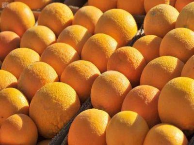 البرتقال .. ثمرة الفيتامينات الطبيعية