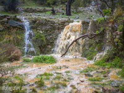 أمطار #تنومة في #صور