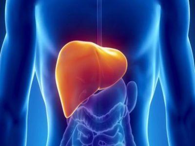 دراسة تكشف الرابط بين مرض السكري ودهون الكبد