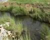 جمال المياه الجارية في اودية تنومة