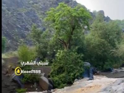 من أمطار تهامة / تصوير شبيلي الشهري